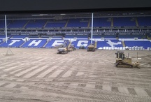 Spurs Pitch Renovation / The Tottenham Hotspur pitch is currently undergoing  a total renovation. This happens about every 8 years. We will be posting the progress of the pitch as its being totally removed and then relaid... / by Tottenham Hotspur