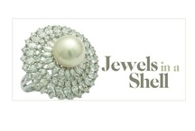 Jewels in a Shell