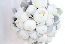 WEDDING/bouquet / by Lucia of theLittleGreenFrog