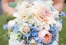 Wedding Bouquets / by Wendy Anderson