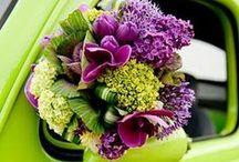 I do.......Wedding/party ideas / by Teresa Walls Danyeur