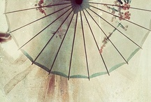 Umbrella-ella-ellas / by Alma Andreescu