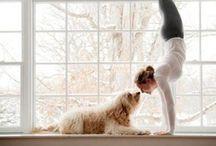 yoga / by Kriszta Buza
