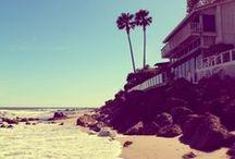· Surfwear: Life's a Beach ·