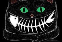 Cats / Katzen / Gatti / Miau / by Pia Kleine Wieskamp