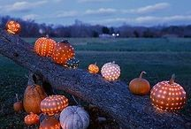 <3 Fall / by Tami Jean