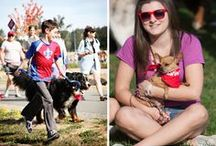 PAWSwalk 2014 / Join hundreds of animal lovers from all over the greater Seattle area for the 23rd Annual PAWSwalk, and raise much-needed funds for homeless, helpless and abandoned animals!  Saturday, September 6, 2014 / 10:00AM-1:00PM / King County's Marymoor Park / www.pawswalk.net / by PAWS Progressive Animal Welfare Society