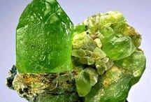 The Green Beautiful
