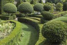 Garden Design / garden design