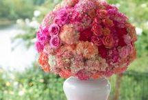 flower power / by Liz Curtis