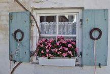 window / by Dorien Boeijen