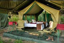 CAMP / I love to camp! www.babalubabyshop.com / by Erika @ Babalu Baby and Kids