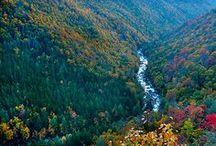Wild, Wonderful, West Virginia! / by Ruth McKean