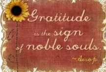 Gratitude / by Ruth McKean