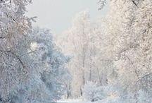 Beauty in Winter / by Donna Loves Yarn