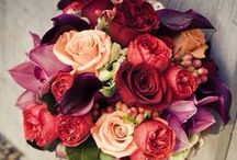 Rose-Themed Wedding / Roses, romantic or rustic, can never be wrong for a wedding!