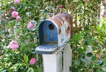 For the birds / Bird houses and feeders / by Valerie Dykstra