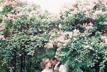 Weddings / by Alexandra Hardy