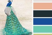 Colour Scheme Photos
