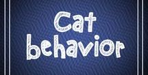 Cat Behavior / In this board we post about cat behavior and cat training