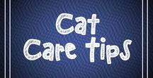 Cat Care Tips / On this board we share cat care tips to help you