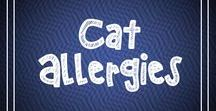 Cat Allergies / Cat allergies, symptoms, cat allergy remedies and relief, how to reduce cat allergies...