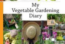 Garden / by Debbie Stevens Heazle