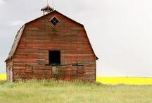 Barns / by Debbie Stevens Heazle