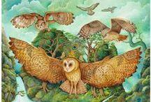 owls, uilen, gufetti, hibou, eule, сова, ינשוף, フクロウ,  / by Arina