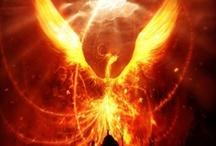 Phoenix / pattern inspiration