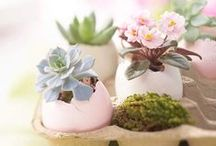 SPRING | EASTER / fluffy tails, artful eggs + blooming flowers / by Red Stamp