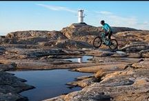 Mountain Biking / Follow this board to get the latest on mountain biking adventures! Also bits on mountain bike fitness and mountain bike repairs and MTB accessories.