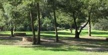 Camping spots / Pet friendly 1 - 3 hours drive Camping spots from CPT