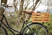 New Wheels! / by Abbey {Leaning Shanty Farm}