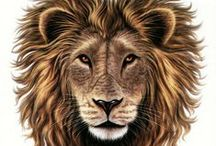I ♥ Lions & I'm a LEO! (Astrology) 1 / My sun sign is Leo. Ascendant sign is Sagittarius. Moon sign is Gemini. Venus is in Leo. My life path number is 5. / by Denise Wiesen