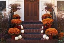 Fall door and doorway decor / by Shannon McGee