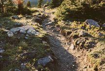 up the gar-den path