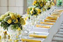 Blossoming Hydrangea  / Lemon & Lime Citrus Colored Wedding Invitation Suite  / by Abbey Malcolm Letterpress + Design