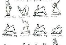 yoga, stretch, and wellness