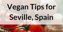 Vegan Travel Tips / Vegan travel tips, vegan restaurants, vegan cafes, best travel destinations for vegans. The travel blog: http://brightnomad.net/ travel blog, travel blogger, travel blogging, vegan travel, vegan travel  food, vegan travel  snacks, vegan traveling