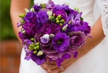Purple wedding inspiration / Purple wedding ideas from the hitched.co.za inspiration gallery