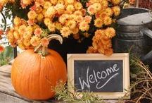It's All in the Fall Y'all / Oh Fun Fall.  I love it most of all. / by Barb Triplett-Brown