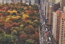 NYC Trip Ideas