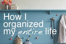 I WILL Get More Organized / by Tracy Bolek