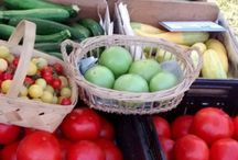 Farmers' Market / Tracey's favorite farmers' market tips and delish recipes from ingredients you'd buy at your local farmers' market