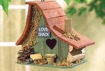 Bird Houses / by Sue Ballard