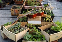 Rooftop garden retreat