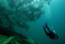 Dekopause Magazin Tauchen Diving