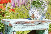 Outdoor & Garden / Ohhhhh to have a garden of a thousand acres...J