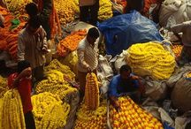 Markets of every kind, everywhere / Colour, foodies, smells, magical, crowds,